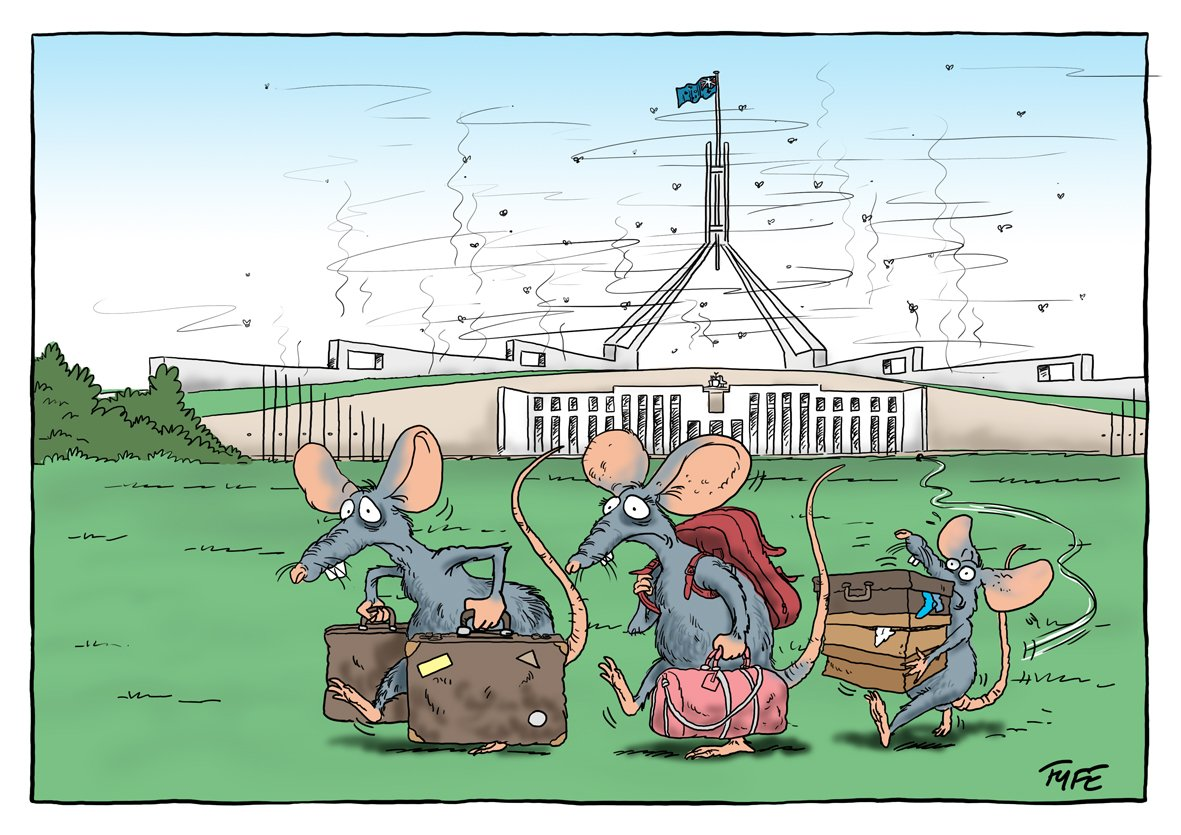 Image result for AUSTRALIAN A SINKING SHIP CARTOON